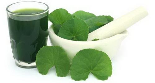 Rau má có thể chế thành nhiều loại sinh tố tươi ngon, dễ làm.